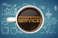 Pro-Active Professional Services Hourly Charge (profserv)